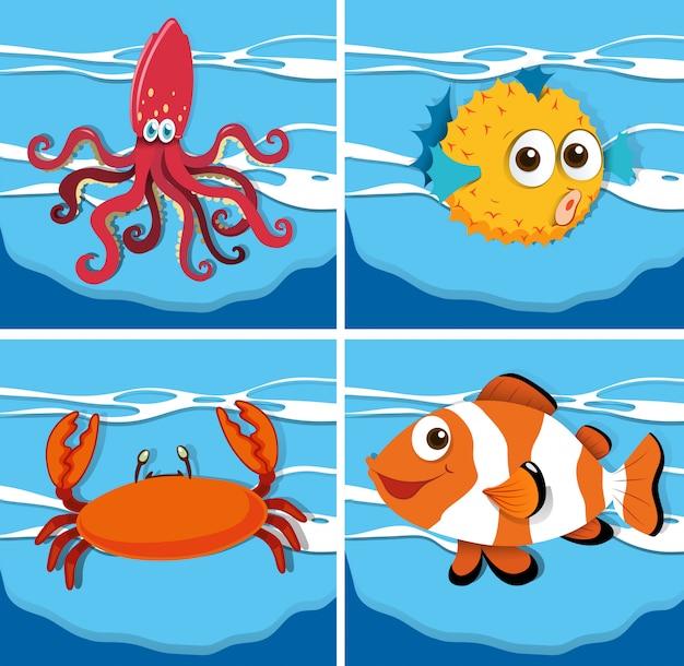 Diversi tipi di animali marini Vettore gratuito