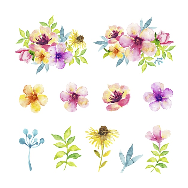 Diversi tipi di fiori e foglie in effetto acquerello Vettore gratuito