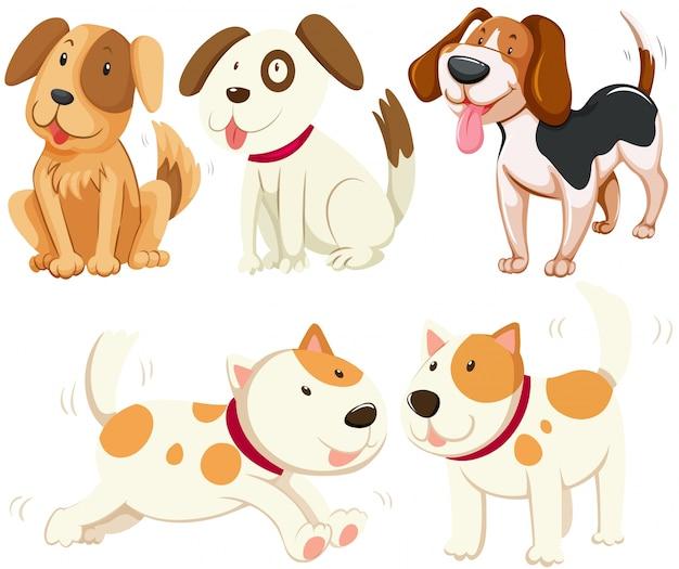 Diversi tipi di illustrazione di cani da cucciolo Vettore gratuito