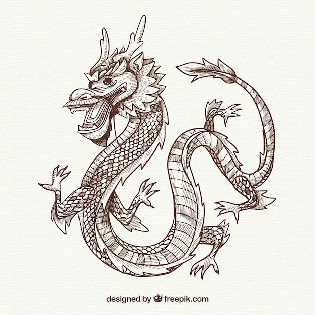 Drago cinese tradizionale disegnato a mano Vettore gratuito