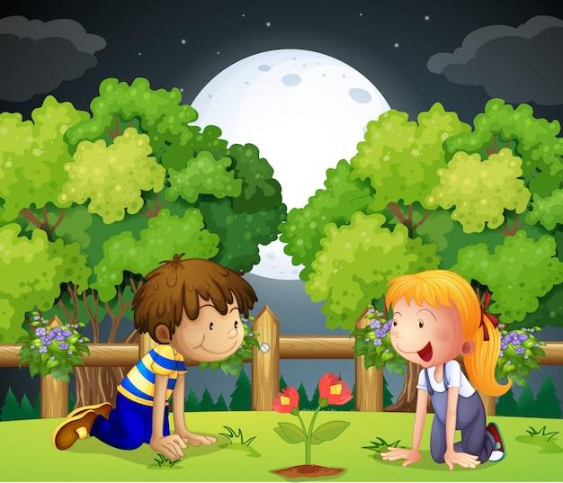 Due bambini che guardano la pianta in crescita Vettore gratuito