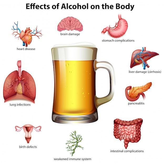 Effetti dell'alcool sul corpo Vettore Premium