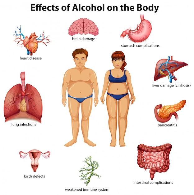 Effetti di alcol sul corpo Vettore Premium