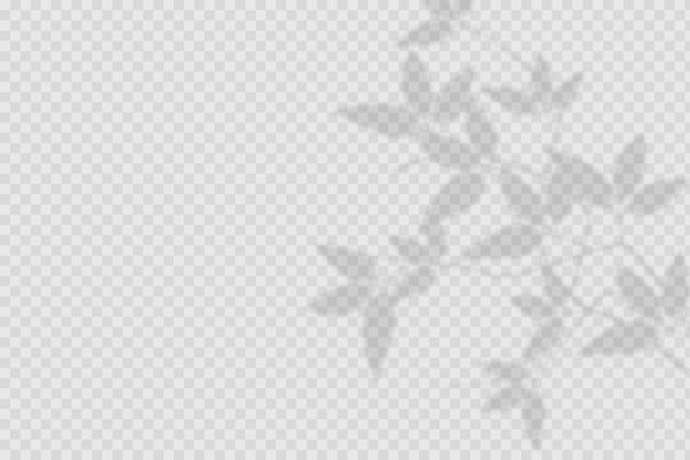 Effetto di sovrapposizione di ombre trasparenti Vettore gratuito