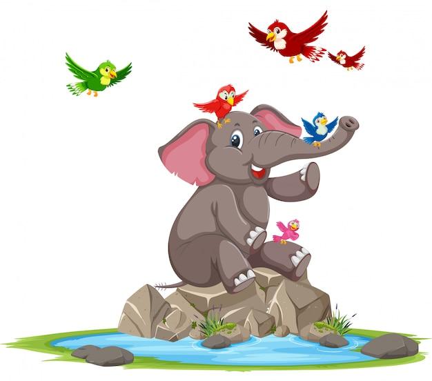 Elefante felice e uccello Vettore Premium