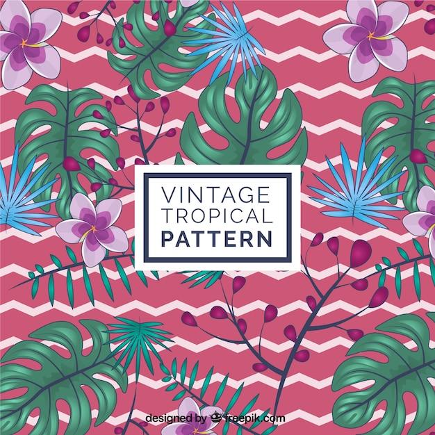 Elegante motivo tropicale con stile vintage Vettore gratuito