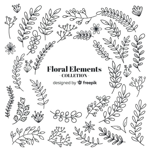 Elementi decorativi floreali disegnati a mano incolore Vettore gratuito