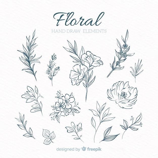 Elementi decorativi floreali disegnati a mano Vettore gratuito