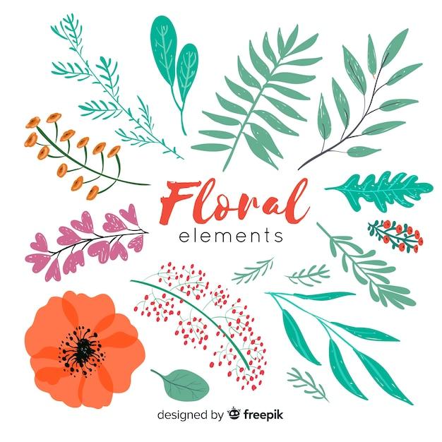 Elementi decorativi floreali Vettore gratuito