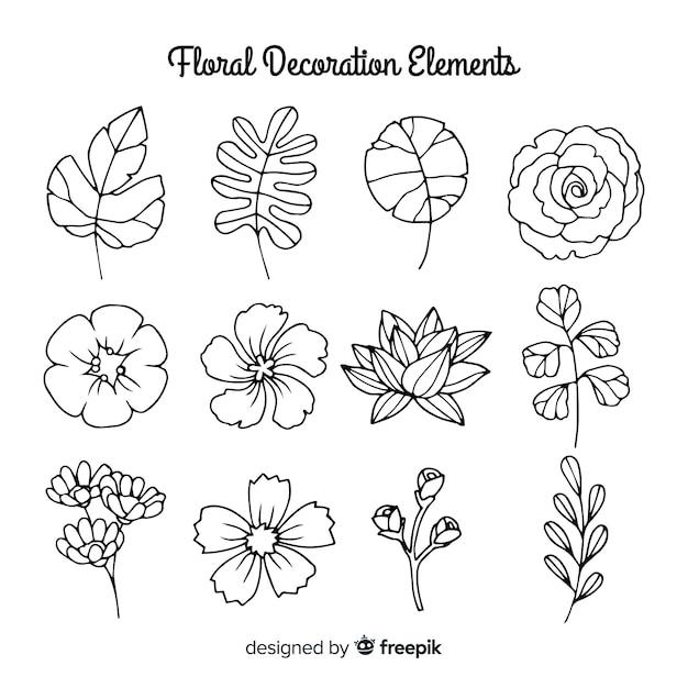 Elementi di decorazione floreale disegnati a mano incolore Vettore gratuito