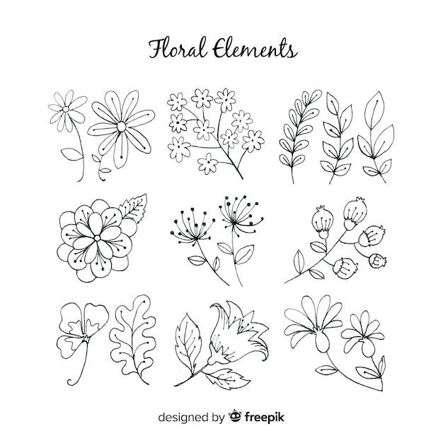 Elementi di decorazione floreale disegnati a mano Vettore gratuito