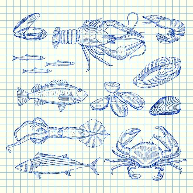 Elementi di frutti di mare disegnati a mano sul foglio di cella Vettore Premium
