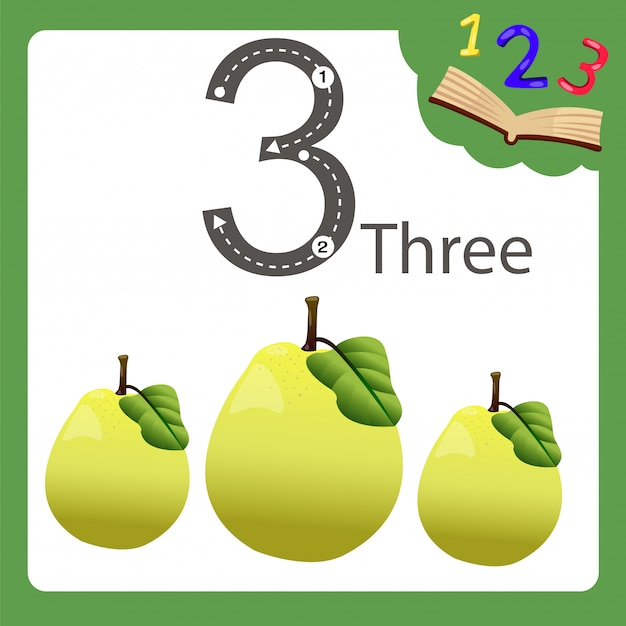 Elementi di mela cotogna tre numeri Vettore Premium