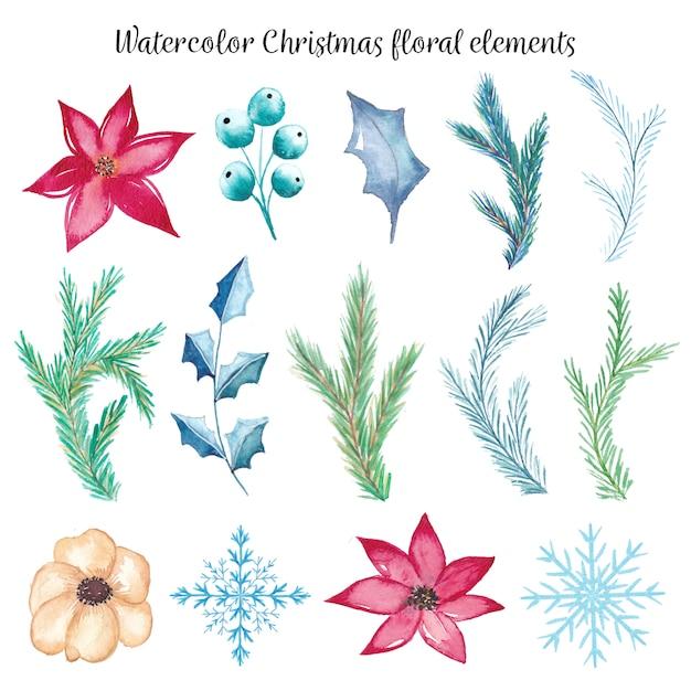 Elementi floreali di natale ad acquerello Vettore Premium