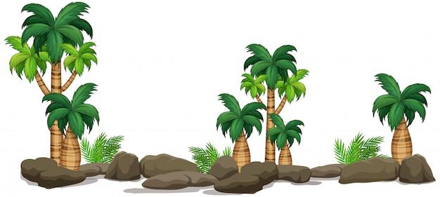 Elemento di natura vegetale isolato Vettore gratuito