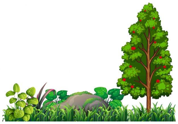 Elemento vegetale natura isolata Vettore gratuito
