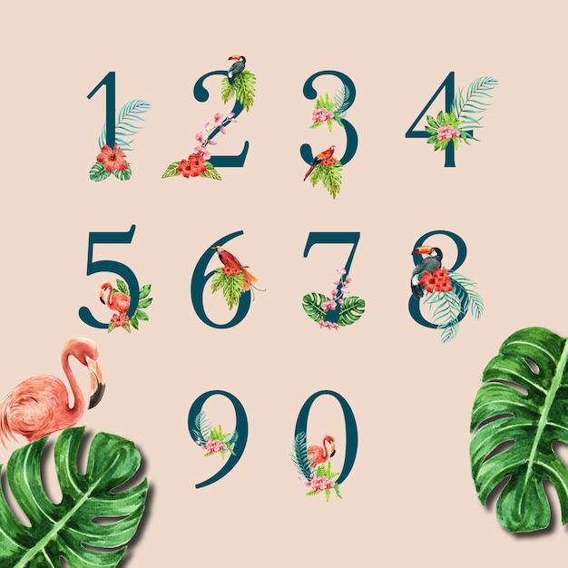 Estate tipografica di alfabeto tropicale di numero con fogliame delle piante Vettore gratuito