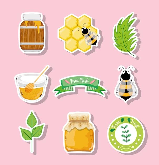 Etichetta di miele biologico Vettore Premium