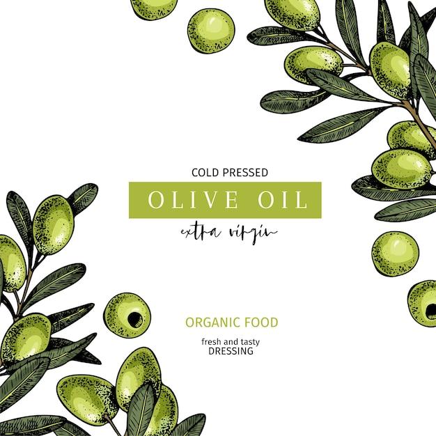 Etichetta disegnata a mano di olio extravergine di oliva Vettore Premium