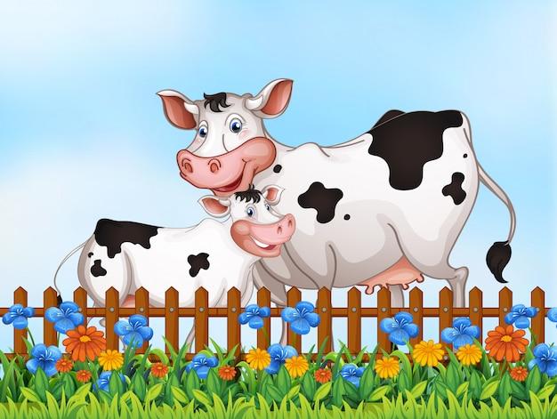 Famiglia di mucche al giardino Vettore gratuito