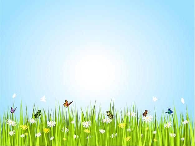 Farfalle in erba Vettore gratuito
