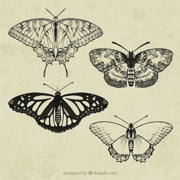 Farfalle retro Vettore gratuito