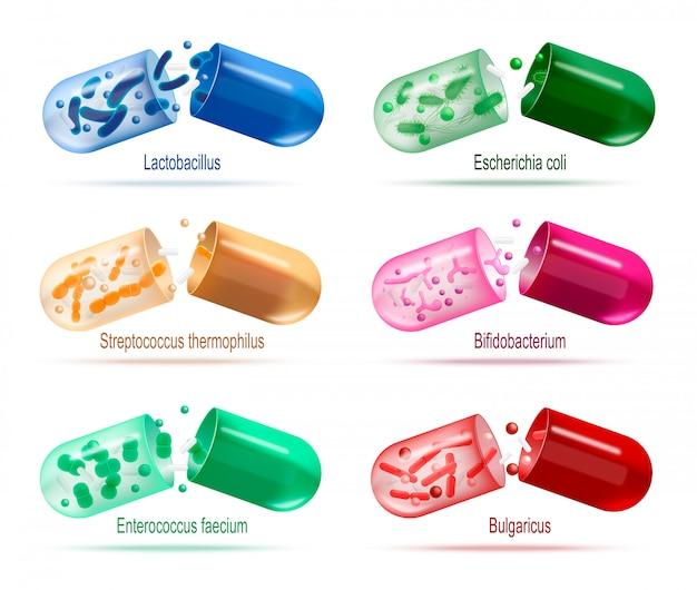 Farmaci con set di vettore di batteri probiotici Vettore Premium