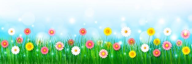 Fiore della primavera e fondo dell'erba verde Vettore Premium