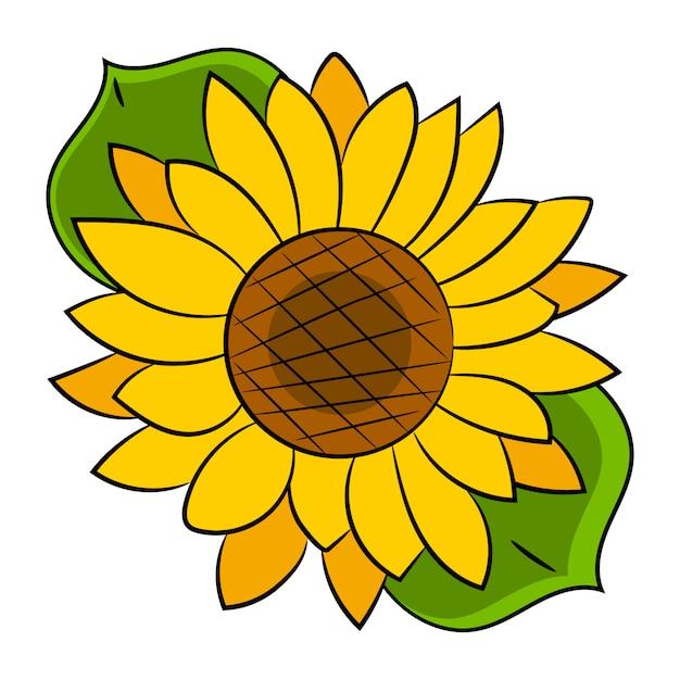 Fiore di girasole isolato, illustrazione vettoriale Vettore Premium