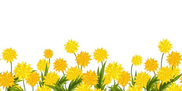 Fiore di tarassaco di confine lungo formato senza soluzione di continuità. Vettore Premium