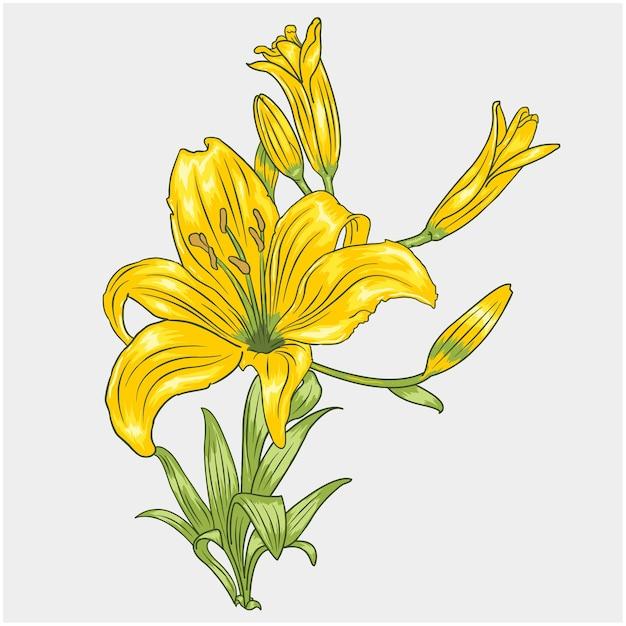 Fiore giallo Vettore Premium