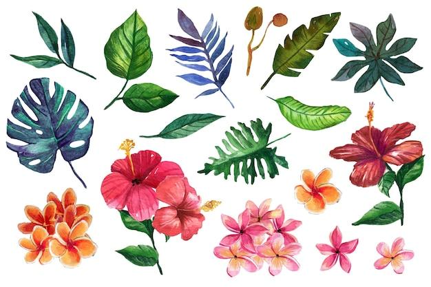 Fiori colorati caldi e foglie tropicali Vettore gratuito