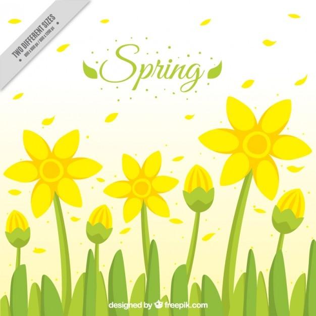 Fiori gialli primavera sfondo Vettore gratuito