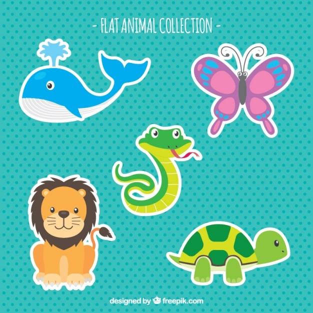 Flat pack di animali colorati Vettore gratuito