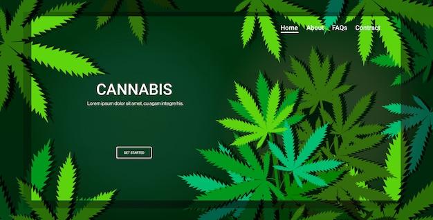 Foglie di cannabis o marijuana landing page concetto di consumo di droga spazio orizzontale copia Vettore Premium