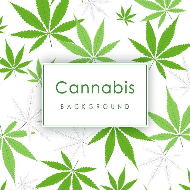 Foglie di marijuana sfondo verde pianta di cannabis. fitta vegetazione di ganja. Vettore Premium