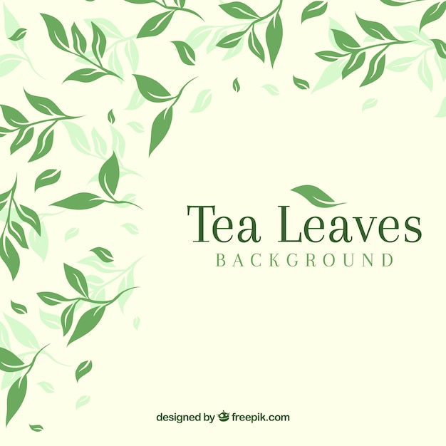 Foglie di tè sfondo con design piatto Vettore gratuito