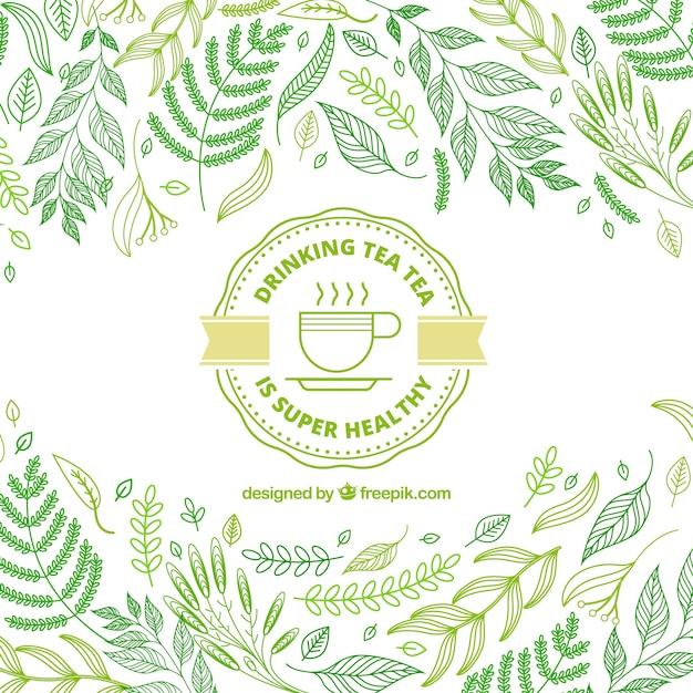 Foglie di tè sfondo con stile disegnato a mano Vettore gratuito