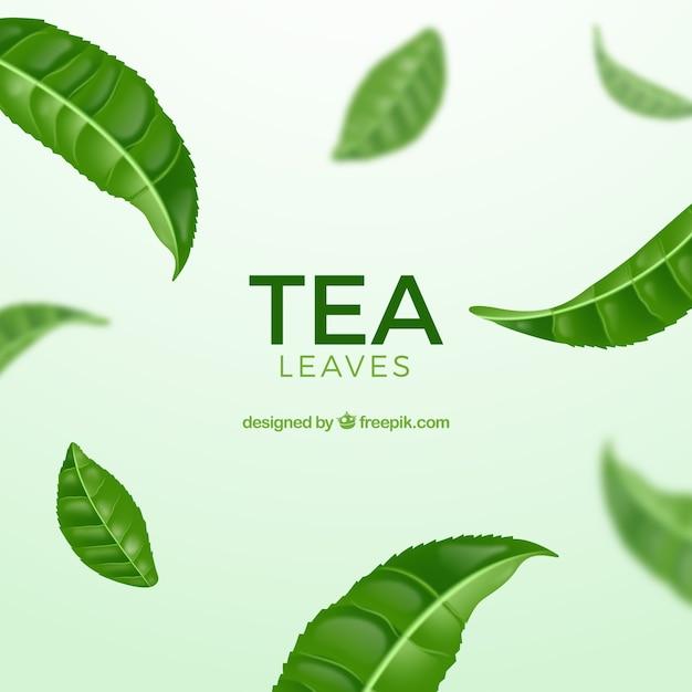 Foglie di tè sfondo con stile realistico Vettore gratuito