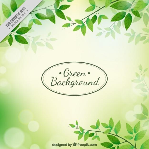 Foglie verdi sfondo Vettore gratuito
