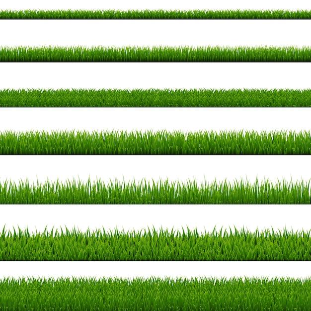 Fondo bianco della raccolta del confine dell'erba Vettore Premium
