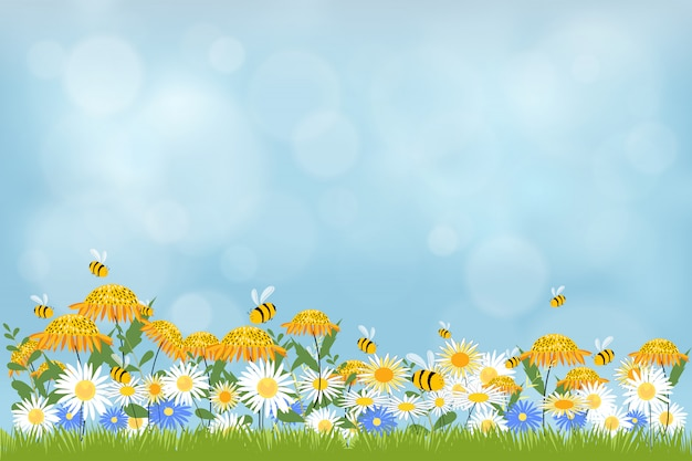 Fondo della natura della primavera con il campo delle camomille e dell'erba. Vettore Premium