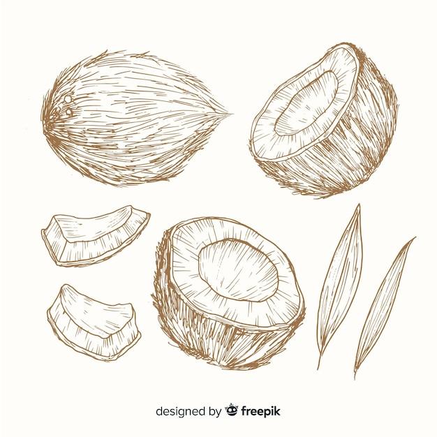 Fondo di cocco incolore disegnati a mano Vettore gratuito