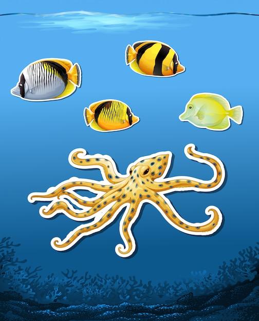Fondo subacqueo della calotta della creatura di mare Vettore gratuito