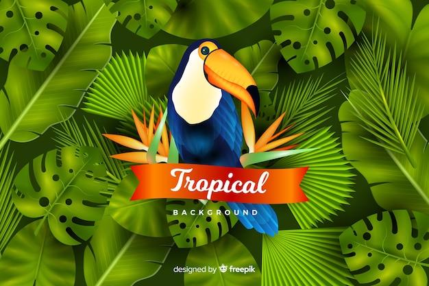 Fondo tropicale realistico delle foglie e degli uccelli Vettore gratuito