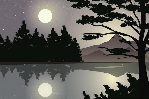 Foresta di montagna e pino con vista sul lago alla luce