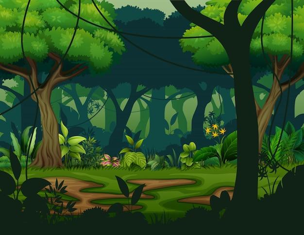 Foresta pluviale scura con sfondo di alberi Vettore Premium