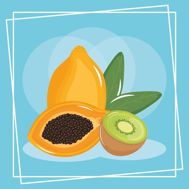 Frutta esotica fresca di kiwi e papaia Vettore Premium