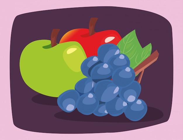 Frutta fresca di nutrizione delle mele dell'uva Vettore Premium