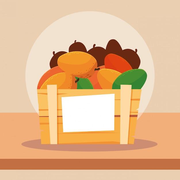 Frutti di manghi freschi in cassa di legno Vettore Premium